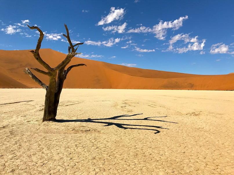 Deadvlei, em Sossusvlei (Viagem fotográfica pela Namíbia por Carioca NoMundo)