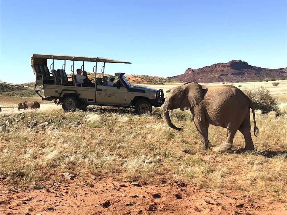 Elefante se aproxima do jipe em Damaraland (Viagem fotográfica pela Namíbia por Carioca NoMundo)