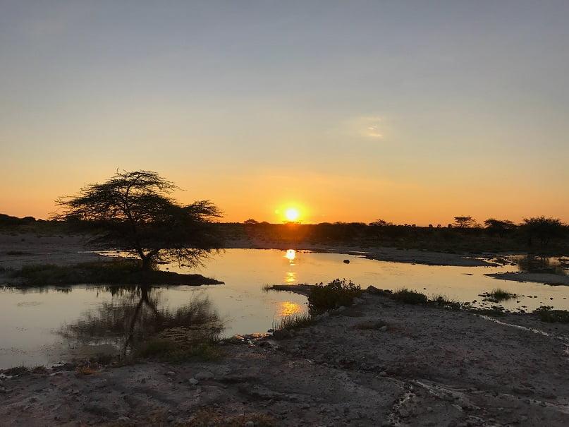 A tranquilidade do Etosha Park na hora do por do sol (Viagem fotográfica pela Namíbia por Carioca NoMundo)