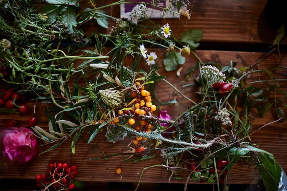 Hora de fazer as reservas para o Noma 2.0: ervas e berries selvagens: ingredientes sempre frescos que virão da fazenda urbana do restaurante